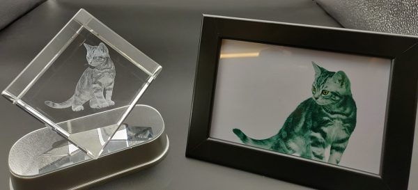 beautiful cat photo engraved in a crystal