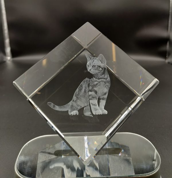 Cat photo engraved in 3d crystal