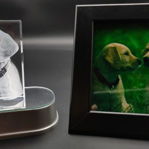 Dog photo engraved inside a 3d crystal