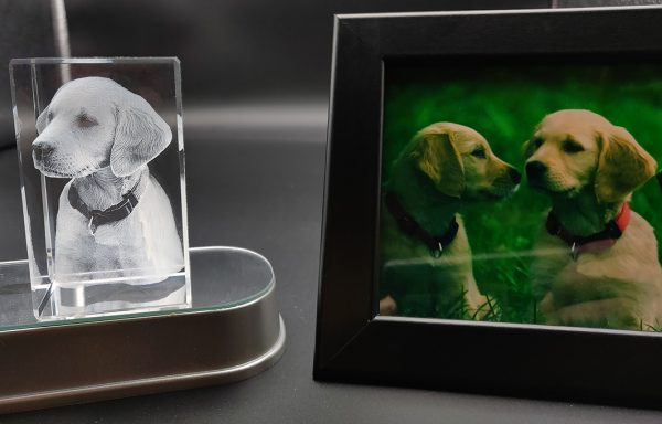 Dog photo engraved inside a 3d crystal