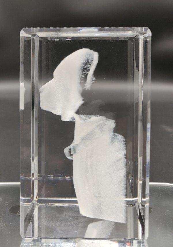 dog left side photo engraved inside a crystal